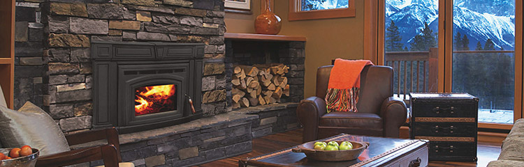 Enviro Wood Fireplace Inserts Long Pond Hearth And Home